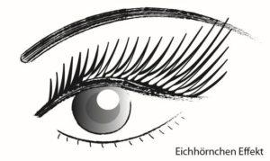 Wimpernverlaengerung-Eichhoernchen-Effekt
