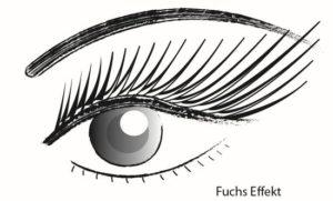 Wimpernverlaengerung-Fuchseffekt